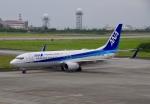 JA8943さんが、宮古空港で撮影した全日空 737-881の航空フォト(写真)