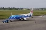 JA8943さんが、宮古空港で撮影した日本トランスオーシャン航空 737-8Q3の航空フォト(写真)