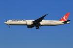 ★azusa★さんが、シンガポール・チャンギ国際空港で撮影したターキッシュ・エアラインズ 777-3F2/ERの航空フォト(写真)