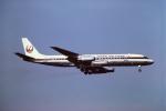 tassさんが、成田国際空港で撮影した日本航空 DC-8-62の航空フォト(写真)