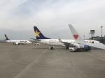 ✈︎Love♡ANA✈︎さんが、神戸空港で撮影したスカイマーク 737-8HXの航空フォト(写真)