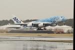 OMAさんが、成田国際空港で撮影した全日空 A380-841の航空フォト(写真)