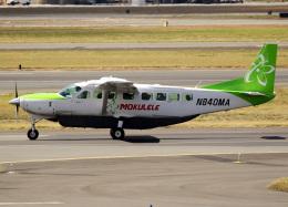 voyagerさんが、ダニエル・K・イノウエ国際空港で撮影したモクレレ航空 208B Grand Caravanの航空フォト(写真)