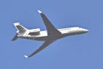 パンダさんが、成田国際空港で撮影したダッソー・ファルコン Falcon 7Xの航空フォト(写真)