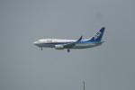 KKiSMさんが、香港国際空港で撮影した全日空 737-781の航空フォト(写真)