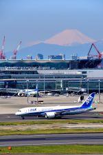 まいけるさんが、羽田空港で撮影した全日空 787-8 Dreamlinerの航空フォト(写真)