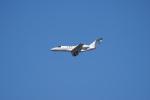 神宮寺ももさんが、成田国際空港で撮影した国土交通省 航空局 525C Citation CJ4の航空フォト(写真)