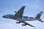 Kenny600mmさんが、関西国際空港で撮影した全日空 A380-841の航空フォト(飛行機 写真・画像)