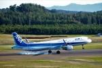 まっさんさんが、庄内空港で撮影した全日空 A321-211の航空フォト(写真)