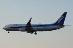 gomachanさんが、大館能代空港で撮影した全日空 737-8ALの航空フォト(写真)