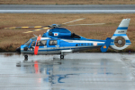 CL&CLさんが、奄美空港で撮影した沖縄県警察 AS365N3 Dauphin 2の航空フォト(飛行機 写真・画像)