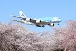 mktさんが、成田国際空港で撮影した全日空 A380-841の航空フォト(写真)
