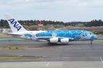 たーしょ@0525さんが、成田国際空港で撮影した全日空 A380-841の航空フォト(写真)