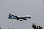 keitsamさんが、羽田空港で撮影した全日空 777-281/ERの航空フォト(写真)