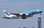 SKY TEAM B-6053さんが、関西国際空港で撮影した全日空 A380-841の航空フォト(写真)