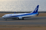 やつはしさんが、中部国際空港で撮影した全日空 737-881の航空フォト(写真)