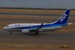 やつはしさんが、中部国際空港で撮影した全日空 737-781の航空フォト(写真)