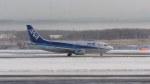 nh002nrtiadさんが、新千歳空港で撮影したエアーニッポン 737-54Kの航空フォト(写真)