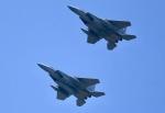 ザキヤマさんが、熊本空港で撮影した航空自衛隊 F-15J Eagleの航空フォト(写真)
