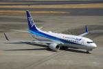 ちゃぽんさんが、羽田空港で撮影した全日空 737-881の航空フォト(写真)