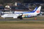 ぽんさんが、岡山空港で撮影した日本航空 737-846の航空フォト(写真)