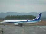 ヒコーキグモさんが、広島空港で撮影した全日空 737-881の航空フォト(写真)