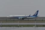 mamemashinさんが、佐賀空港で撮影した全日空 737-881の航空フォト(写真)