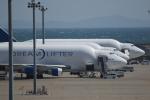 ロボキさんが、中部国際空港で撮影したボーイング 747-4H6(LCF) Dreamlifterの航空フォト(写真)