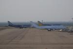ロボキさんが、中部国際空港で撮影したカリッタ エア 747-4B5(BCF)の航空フォト(写真)