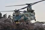 storyさんが、熊谷基地で撮影した航空自衛隊 CH-47J/LRの航空フォト(写真)