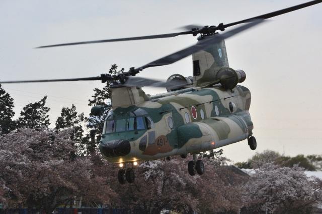 storyさんが、熊谷基地で撮影した航空自衛隊 CH-47J/LRの航空フォト(飛行機 写真・画像)