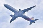 パンダさんが、成田国際空港で撮影したアシアナ航空 A321-231の航空フォト(写真)