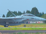 MASACHANさんが、新田原基地で撮影した航空自衛隊 F-15DJ Eagleの航空フォト(写真)