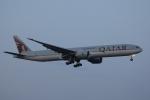 OS52さんが、成田国際空港で撮影したカタール航空 777-3DZ/ERの航空フォト(写真)