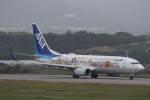 プルシアンブルーさんが、新石垣空港で撮影した全日空 737-881の航空フォト(写真)