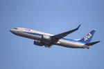 kumagorouさんが、仙台空港で撮影した全日空 737-881の航空フォト(写真)