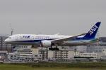 akinarin1989さんが、福岡空港で撮影した全日空 787-8 Dreamlinerの航空フォト(写真)