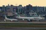 Mochi7D2さんが、羽田空港で撮影したワモス・エア 747-4H6の航空フォト(飛行機 写真・画像)