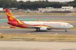 OMAさんが、成田国際空港で撮影した海南航空 737-84Pの航空フォト(写真)