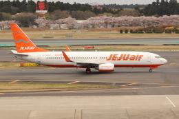 OMAさんが、成田国際空港で撮影したチェジュ航空 737-8ASの航空フォト(写真)