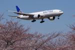 yabyanさんが、成田国際空港で撮影したユナイテッド航空 777-224/ERの航空フォト(写真)