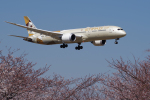 yabyanさんが、成田国際空港で撮影したエティハド航空 787-9の航空フォト(飛行機 写真・画像)