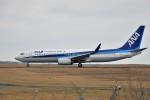 kiraboshi787さんが、広島空港で撮影した全日空 737-881の航空フォト(写真)