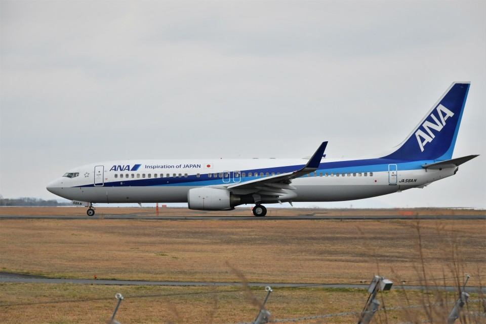 kiraboshi787さんの全日空 Boeing 737-800 (JA56AN) 航空フォト