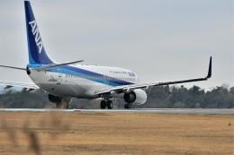 kiraboshi787さんが、広島空港で撮影した全日空 737-881の航空フォト(飛行機 写真・画像)
