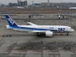 とびたさんが、羽田空港で撮影した全日空 787-8 Dreamlinerの航空フォト(写真)