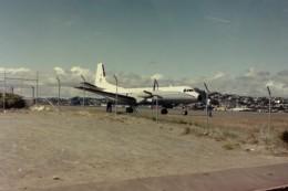 ヒロリンさんが、ウェリントン国際空港で撮影したオーストラリア空軍 BAe-748の航空フォト(飛行機 写真・画像)