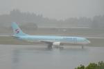 pringlesさんが、鹿児島空港で撮影した大韓航空 737-9B5の航空フォト(写真)
