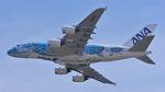 オキシドールさんが、関西国際空港で撮影した全日空 A380-841の航空フォト(写真)