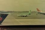 ヒロリンさんが、ロンドン・ヒースロー空港で撮影したエア・リンガス 737-248の航空フォト(写真)